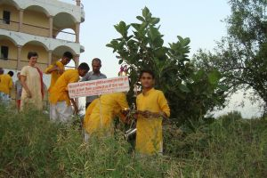 UN Peace Day Jadan-Wish-Tree -1